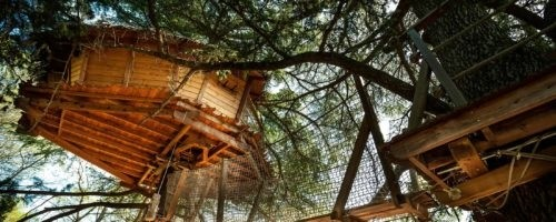 Hébergement insolite Montpellier - Domaine de l'Arbousier - Cabanes dans les arbres - Oenotourisme Hérault