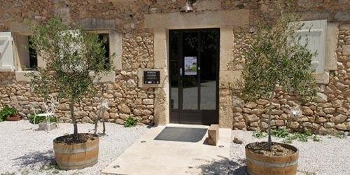 Activités Domaine de l'Arbousier - visite caveau Montpellier - Oenotourisme Hérault